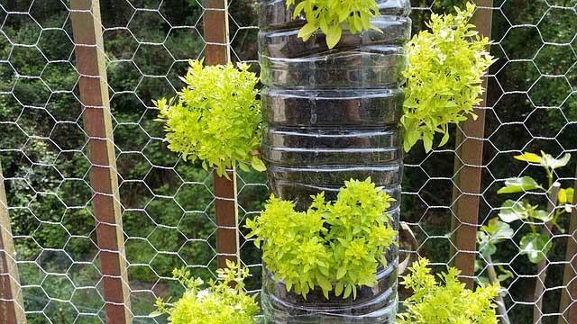 Un jardin vertical pour avoir plus d espace cultivable - Comment faire un jardin vertical ...