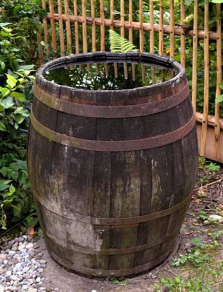 un baril de récupération d'eau de pluie de 200 litres