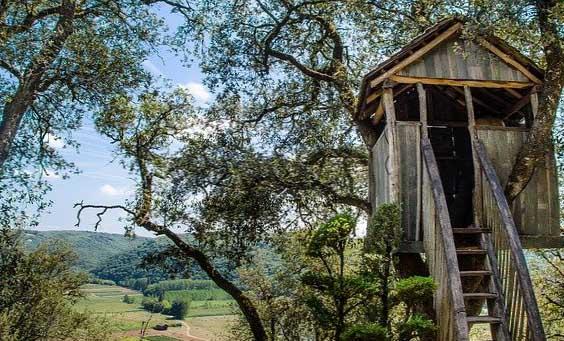Une cabane dans une arbre